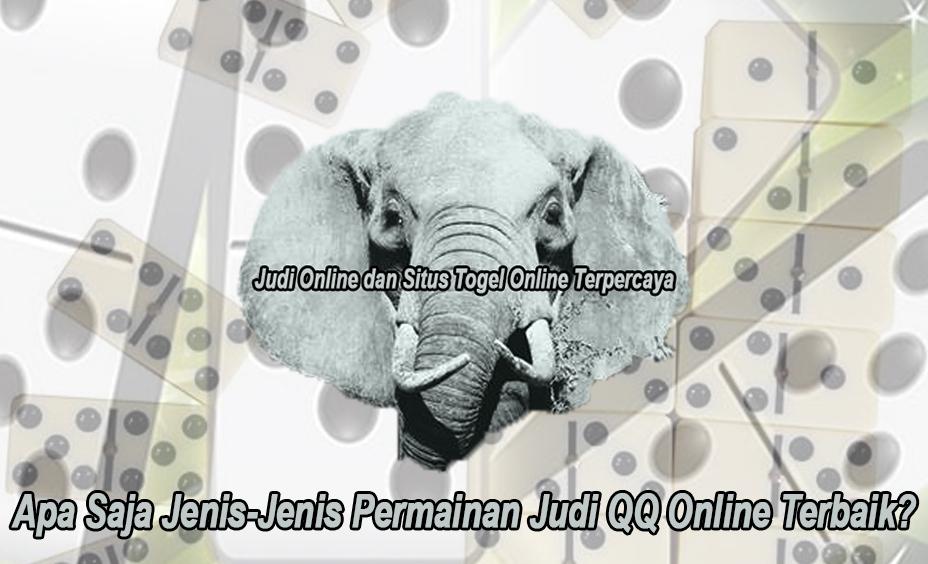 QQ Online Terbaik? Apa Saja Jenis-Jenis Permainan - Elephantsdc