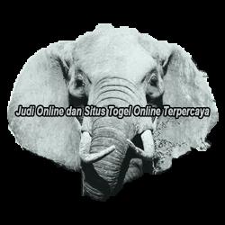 Elephantsdc
