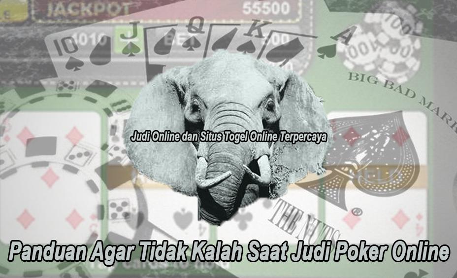 Poker Online Panduan Agar Tidak Kalah Saat Judi - Elephantsdc
